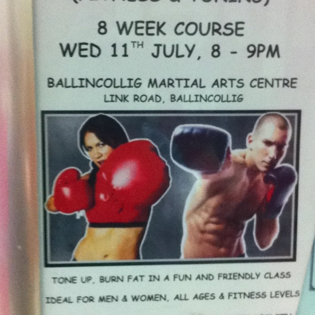 Martial arts fitness course