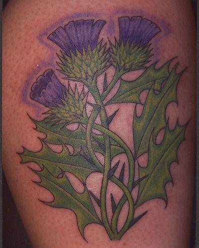 Scottish Heritage Tattoos: 24 Best Scottish Tattoos Images On Pinterest