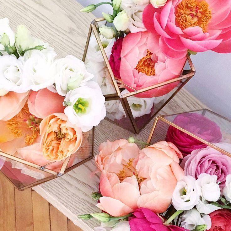 La multi ani Anca @anklupu - ea e ultima colaboratoare a noastra la atelier - aranjamentele ei florale @peonieshydrangeas se ridica de la noi de la atelier, din Timisoara (cu programare in prealabil desigur); ne bucuram ca o avem cu noi si ca ne bucura la randul ei cu minunatele ei flori <3 #atelierbobar #josephine #adrianaunguras #peonieshydrangeas #best #team #atelier #timisoara #cooperativa #girlpower photocredit @florinajosephina…