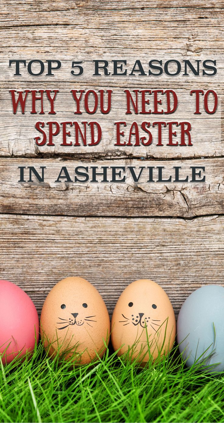 Have you planned your vacation out yet for Easter weekend? Surely you have something fun in mind already! No? Then never fear! Make Asheville your destination of choice for a perfect spring getaway at one of these cabins in Asheville, NC. Let us show you 5 compelling reasons why you need to take a little spring vacation in the beautiful Blue Ridge Mountains here with us.