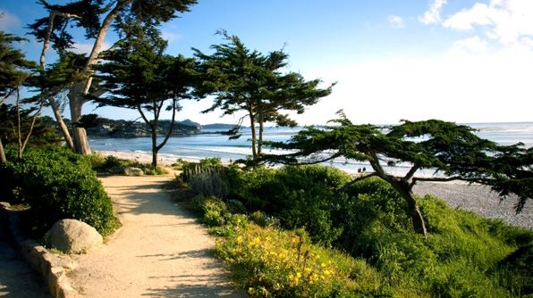Pacific Coast Highway Road Trip - Photo 10: Carmelpacif Grovebig, Carmel By The Sea, Beautiful Pacific, Favorite Places, Big Sur, American Roadtrip, Places I D, Roads Trips, Pacific Coast Highway