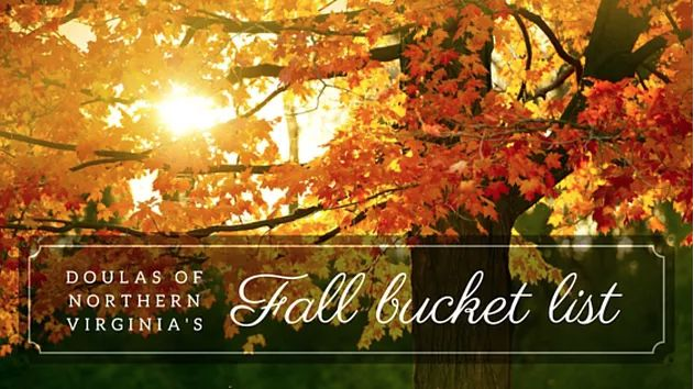 Happy Autumn! WIth the change of the seasons, comes the chance to remind yourself to slow down and enjoy the season you're in. The same can be said of pregnancy.   #doulasofnorthernva #pregnancy #birth #postpartum #parenthood #fall #autumn #bucketlist