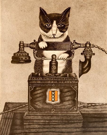 Amsterdam cat with telephone