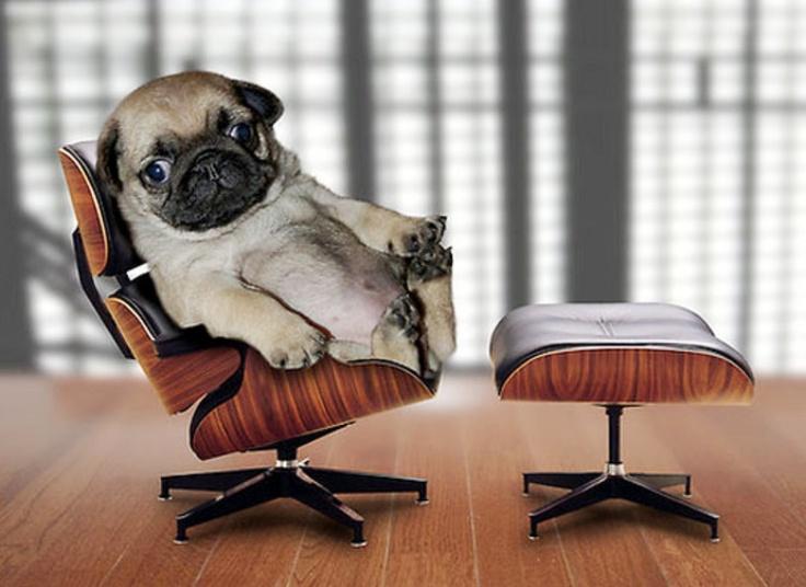 หูยย์ The EAMES Lounge Chair เก้าอี้ในฝัน ไม่มีปัญญาซื้อ แต่หงัยอิตานี่นั่งสบายใจเฉิบเบย ^^