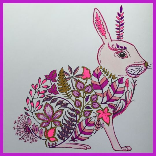 45 best Jardim Secreto e Outros livros de Colorir images on - copy coloring book pages of rabbits
