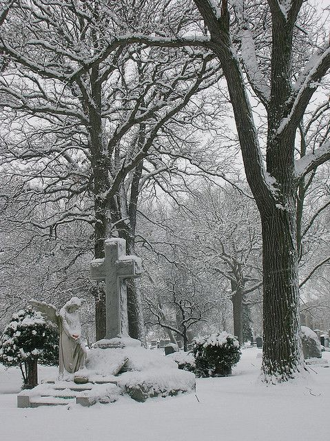 Silent Winter Witness (Chicago)..what a photo!  <3