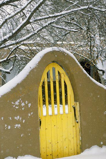 winter yellow.