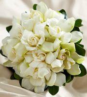 Le Bouquet FTD® Reve de Champagne™