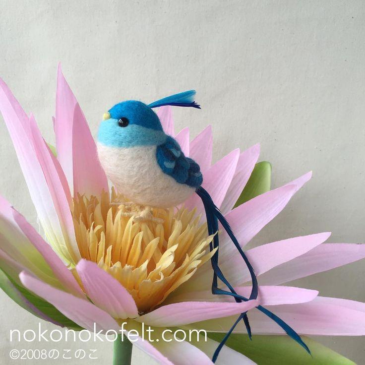 羊毛フェルト作品「幸せの青い鳥(ロングテール)」 Adorable felt Happy blue bird (Long tail). #羊毛フェルト #羊毛フェルト鳥 #羊毛 #フェルト #ニードルフェルト #ハンドメイド #のこのこ #まんまることり #鳥 #😊 #💕 #😍 #羊毛氈 #войлок #felt #needlefelting #needlefelt #felted #handmade #cute #pretty #happy #smile #japanese #nokonokofelt #madeinjapan #bird