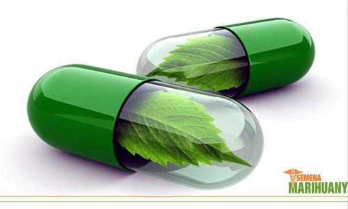 CINV – nevolnost a zvracení indukované chemoterapií Jak syntetické, tak přírodní léčebné kanabinoidy proti CINV prokazatelně působí Léčebné konopí má oproti farmaceutikům výhodu hlavně v menším množství nepříznivých vedlejších účinků....