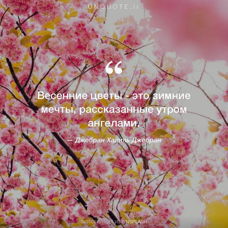 """Джебран Халиль Джебран """"Весенние цветы - это зимние мечты, рассказанные утром ангелами."""" Photo by Gabriel Garcia Marengo / Unsplash"""