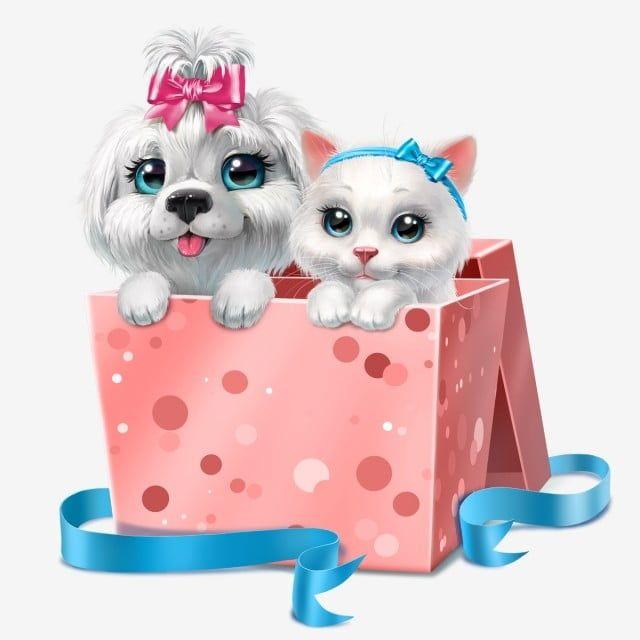Branco Gatinho E Cachorrinho Na Caixa Cor De Rosa Animal Aniversario Arco Imagem Png E Psd Para Download Gratuito Baby Cartoon Drawing Pink Posters Puppy Clipart