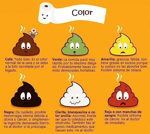color de las heces