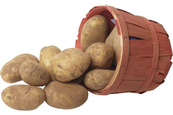 ¿Qué alimentos contienen carbohidratos de acción rápida? | Muy Fitness