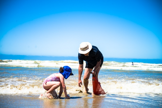 Cockling at Goolwa Beach, South Australia