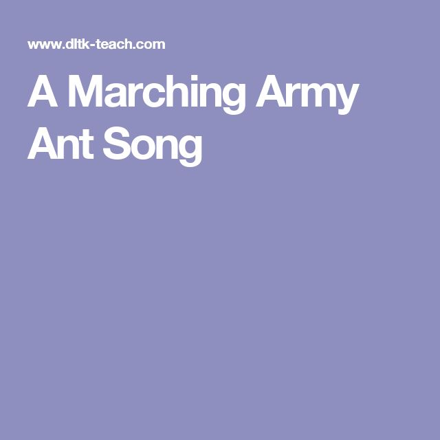 A Marching Army Ant Song