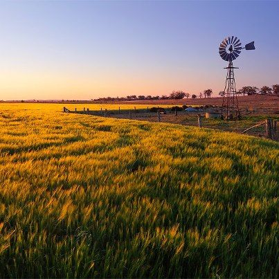 The Darling Downs - Queensland - Australia (farming country)