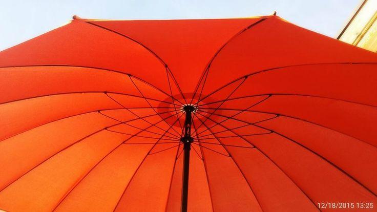 https://flic.kr/p/Ckd9i9 | A big umbrella for the winter sun in Italy