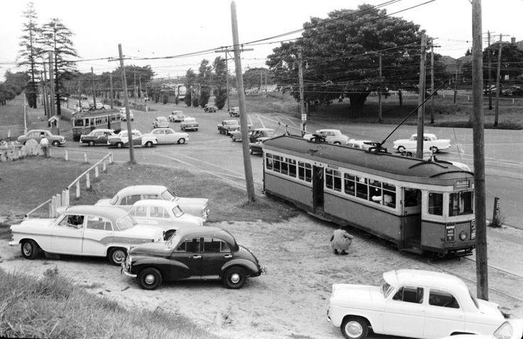 Anzac Pde. Moore Park. 1959
