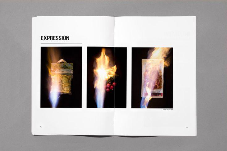 Gaspillage alimentaire, mise en page magazine, expression, aliments, incinération, flames, brûler, raviolis, radis, viande, photographies