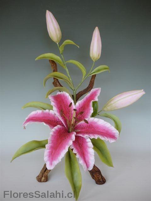 Lilium rosado   Flores Salahi