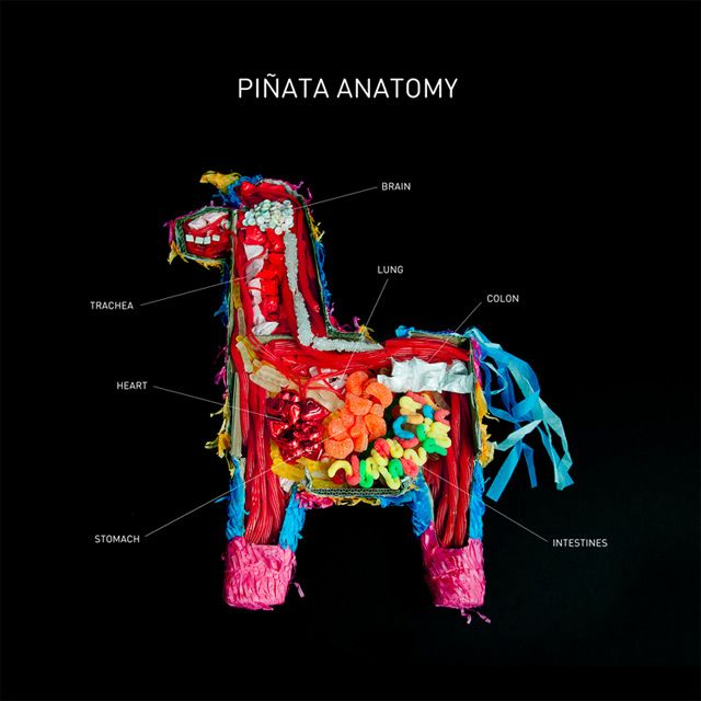 Piñata Anatomy piñatas food candy anatomy