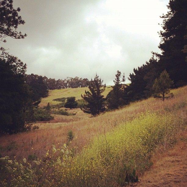 Tilden Park in Berkeley // Instagram