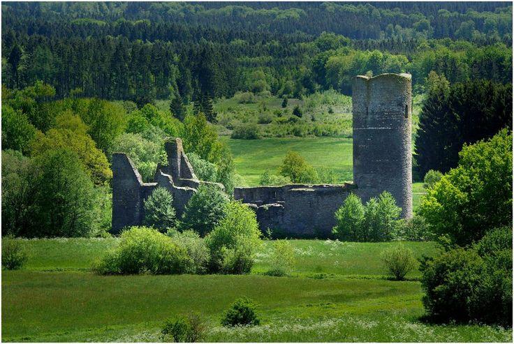 Ruine der ehem. Wasserburg Baldenau / Hunsrück (1) von Mohr Wilfried