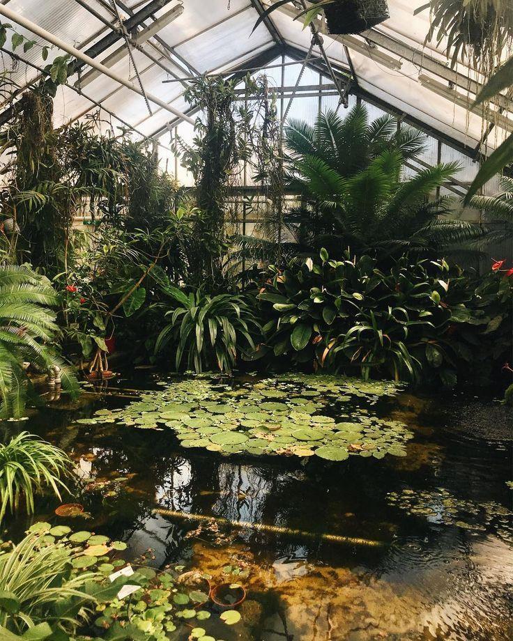 Der Abendbesuch Im Botanischen Garten Linz Glasshouse Botany Botan Abendbesuch Botan Botanischen Botany Luxury Garden Rooftop Garden Plants