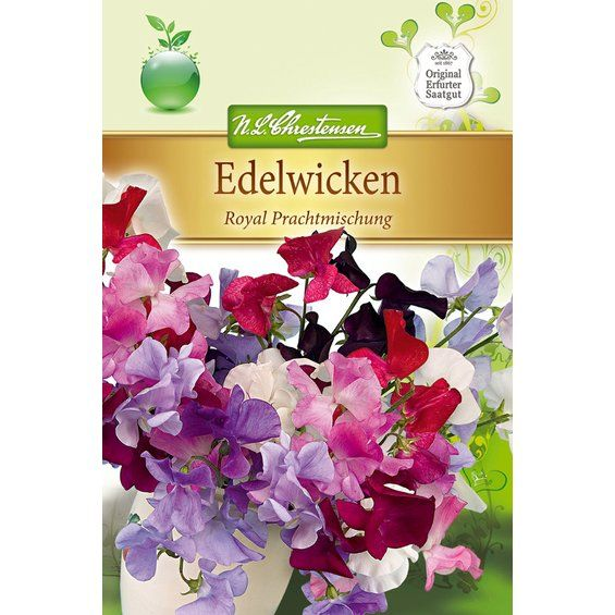 Edelwicke Royal Prachtmischung