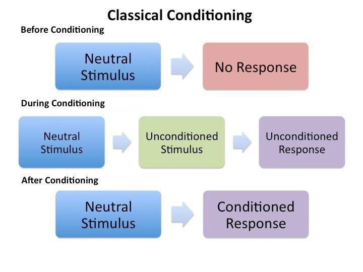 Classical Conditioning Vs Operant Conditioning Venn Diagram Keni