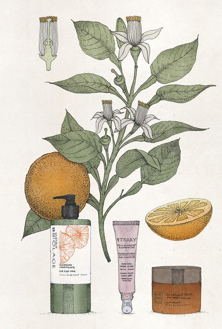 Illustration Bastien Coulon pour ma rubrique dans M: Graine de beauté