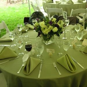 Apple green wedding decorations images wedding decoration ideas apple green wedding theme gallery wedding decoration ideas apple green wedding decorations image collections wedding apple junglespirit Image collections