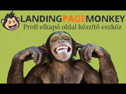 Kapuoldal, Landing Page - Pénz és munka
