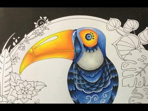 Book Magical Jungle By Johanna Basford Pencils Prismacolor Numbers 935 Black 901 Indigo Blue 1087 Powder 921 Pale Vermilion 1002 Yellowed