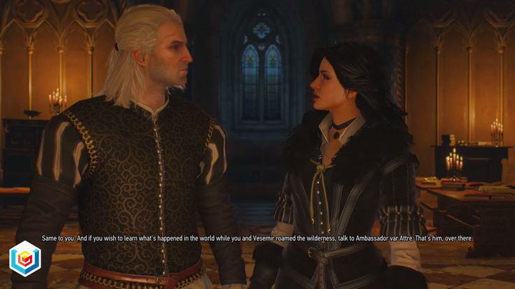 The Witcher 3 Wild Hunt Imperial Audience Main Quest Walkthrough – VGFAQ