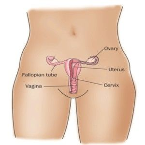 left ovarian cyst symptoms