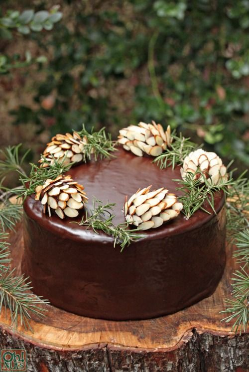 ♥ Chocolate Forest Christmas / New Year Cake - Love the 'almond' pinecones, rosemary sprigs, and  and tree stump presentation. (Use a slice of tree stump for platter.)