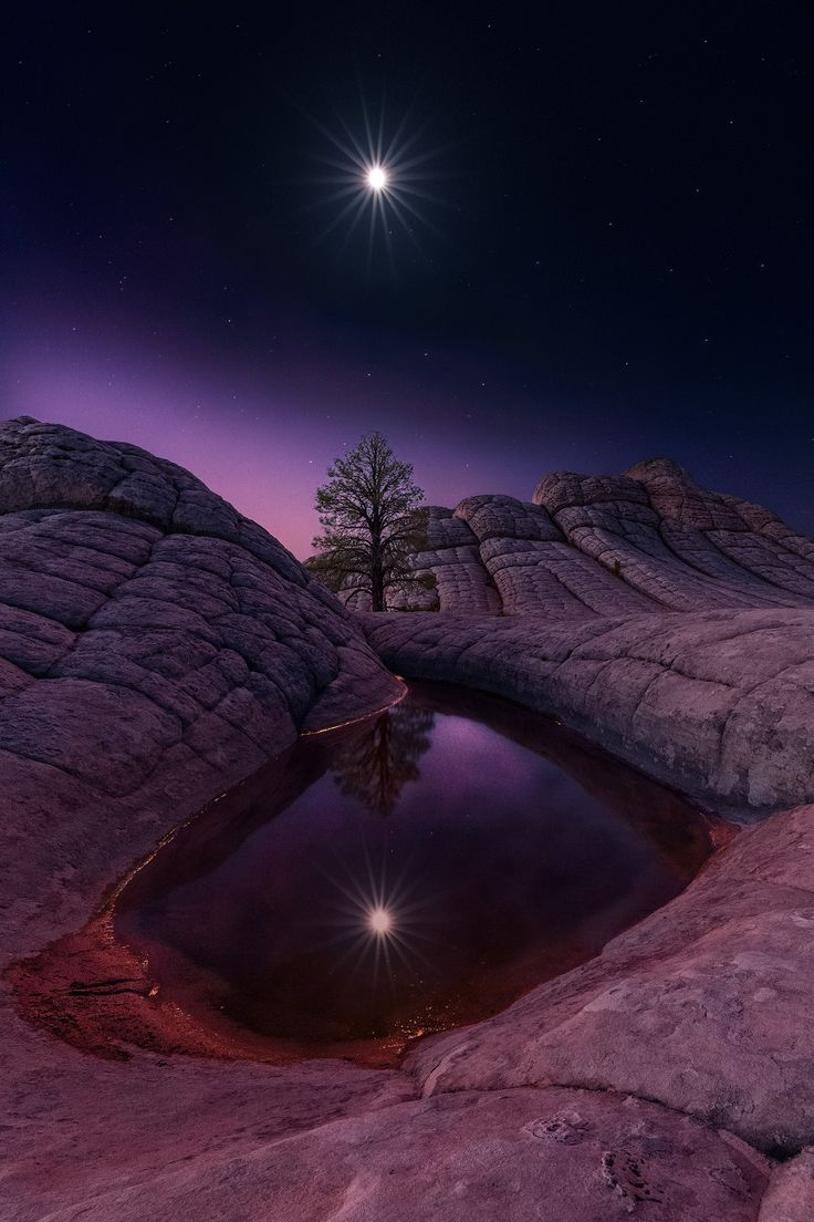 Marvelous Night for a Moon Dance - I captured this image of the full moon in a reflection pool at a remote location along the Northern AZ border. This area known as White Pocket seems to provide endless opportunities for landscape photography. The first time I had traveled to the location, I intended to focus on sunrise and sunset compositions. However, it turned out that the highlight of being there was the most outstanding conditions for Milky Way photography I've ever come across. So for…