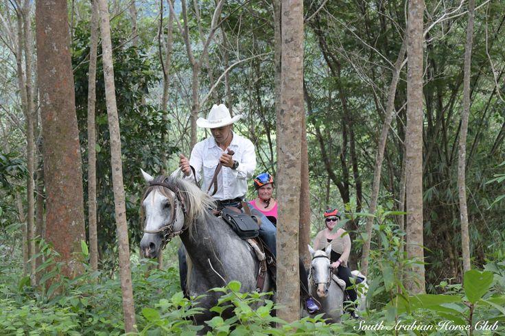 Mountain trail with South Arabian Horse Club