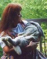 Bunny Lu Adoptions: Litterbox Training                                                                                                                                                                                 More