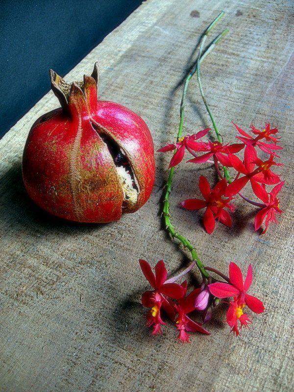 135 Best Images About Grenade Pomegranate On Pinterest