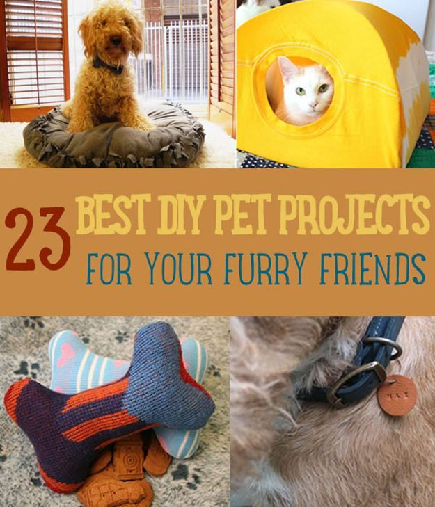 23 Best DIY Pet Projects for Your Furry Friends | http://diyready.com/best-diy-pet-projects-to-keep-your-furry-friends-happy/
