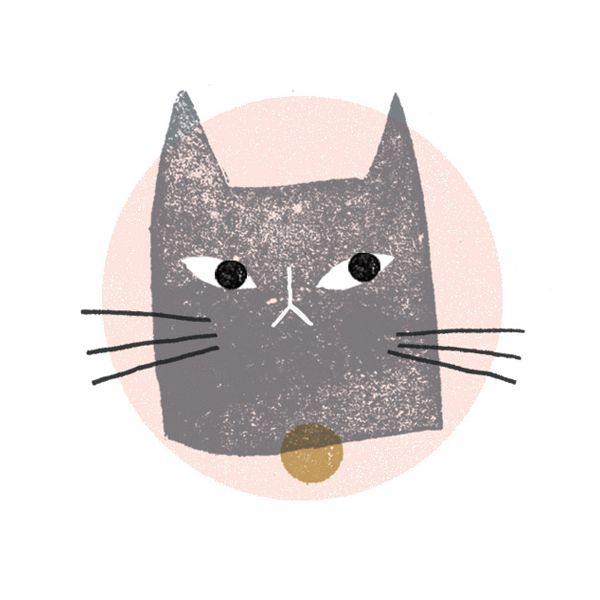pussy - Clare Owen #cat #illustration