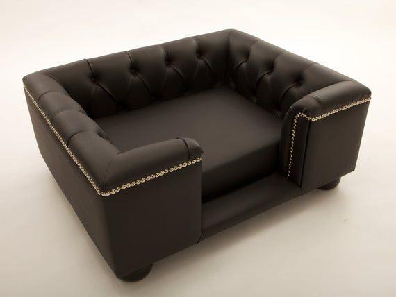 Pin On Sofa Pet