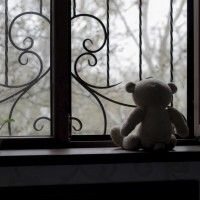 Child's stuffed bear facing out a window