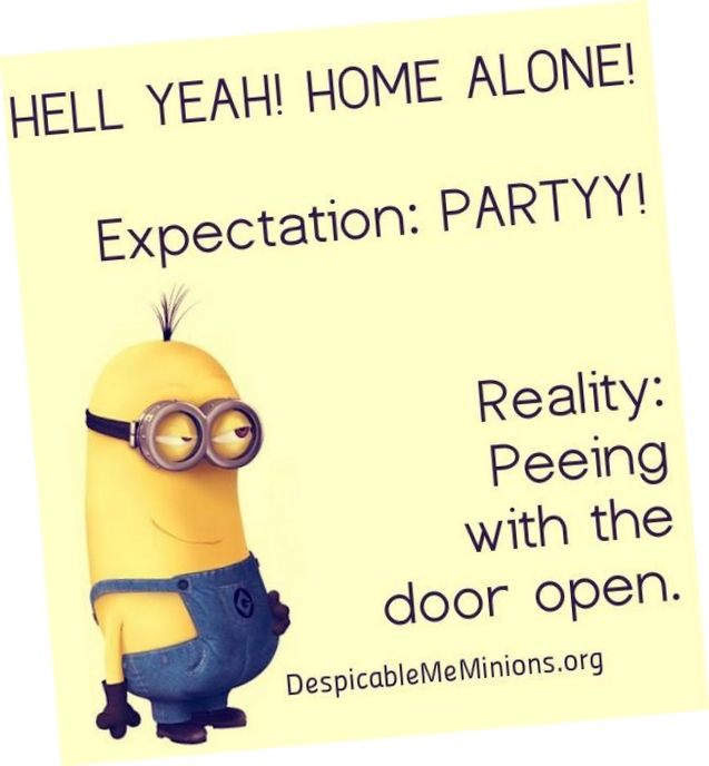 Today Top 82 funny Minions (11:48:55 PM, Sunday 12, March 2017 PDT) - Funny Minions