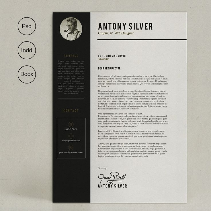 Nice Pro Resume Creativework  Fonts Graphics Themes