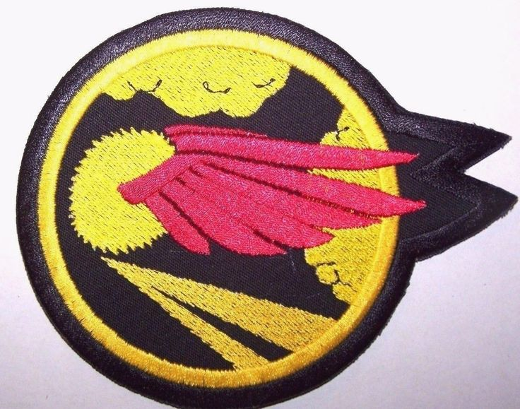 United States Air Force 41st Fighter Squadron Patch