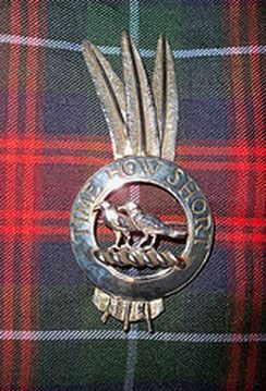 Clan Crest Badge w/ feathers: Most Clan Chiefs, Chieftans and Scots Armigers (those with the right to bear personal arms) now choose to display feathers as part of a Silver crest badge w/ a plain circlet surrounding the crest fm their personal arms, embossed w/ their personal motto. Genuine Golden Eagle feathers are usually displayed only on ceremonial occasions. (pin: Crest Badge of the Chief of Clan Akins, fm the Clan's website) info: http://www.electricscotland.com/heraldry/feathers.htm